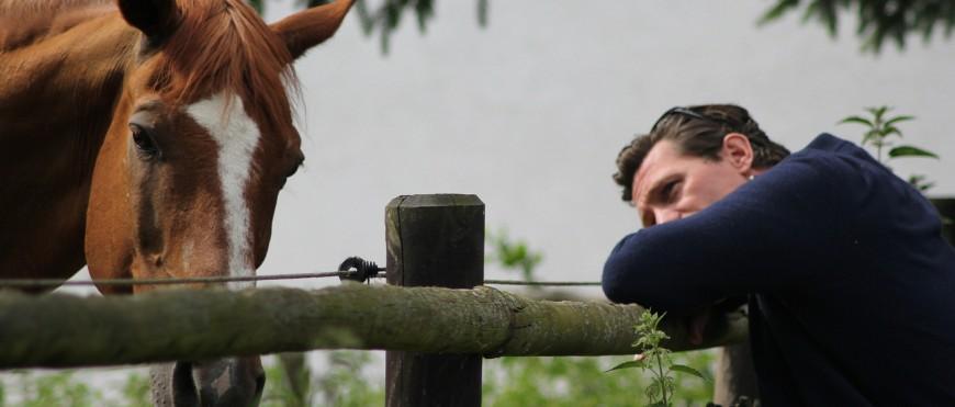 Paardencoaching met Theory U